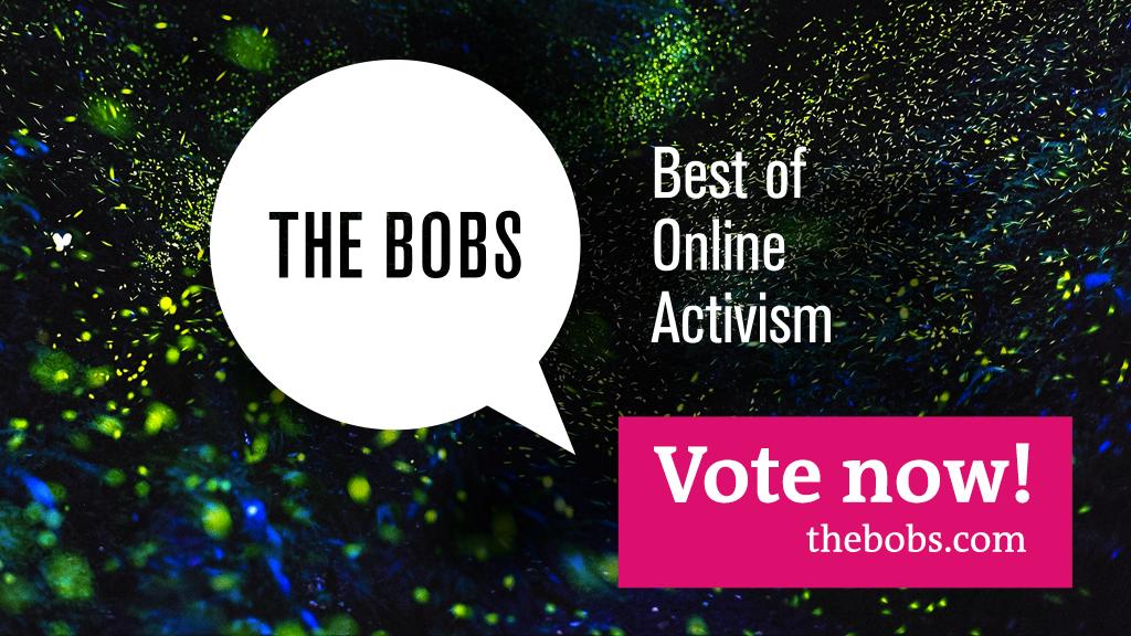 #thebobs16: 2300 öneri arasından 126 finalist seçildi, OYLAMALAR BAŞLADI.