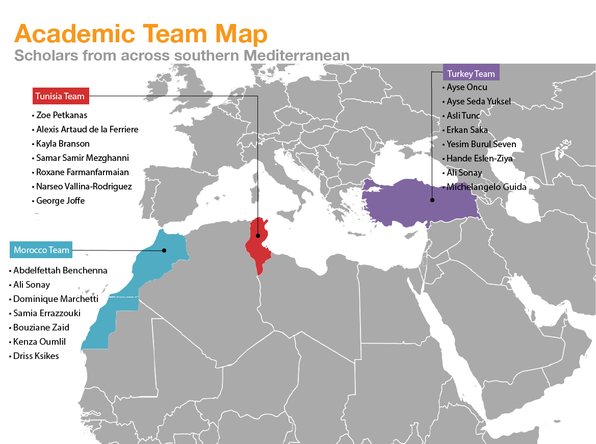 Research Project Infographic (Media in Political Transition in the Southern Mediterranean after 2011) released
